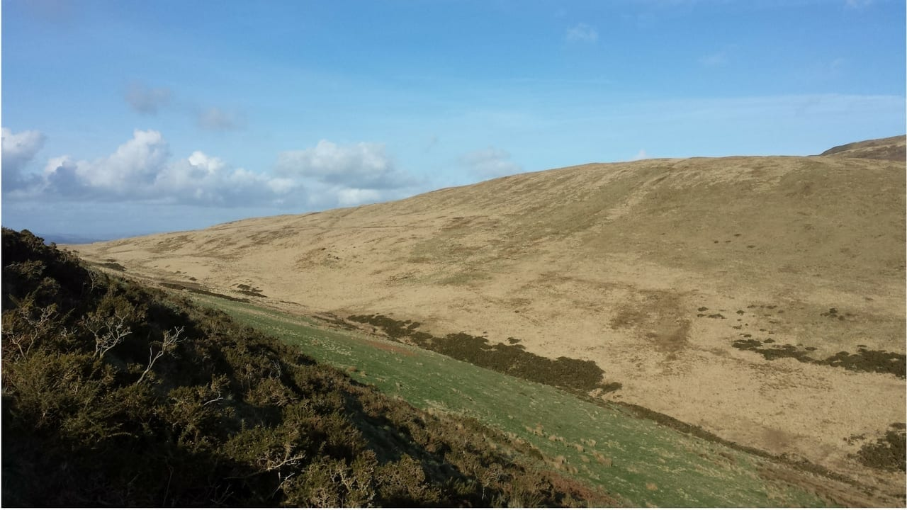 Land Purchase at Cefn Coch